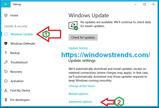 Windows Update's advanced options